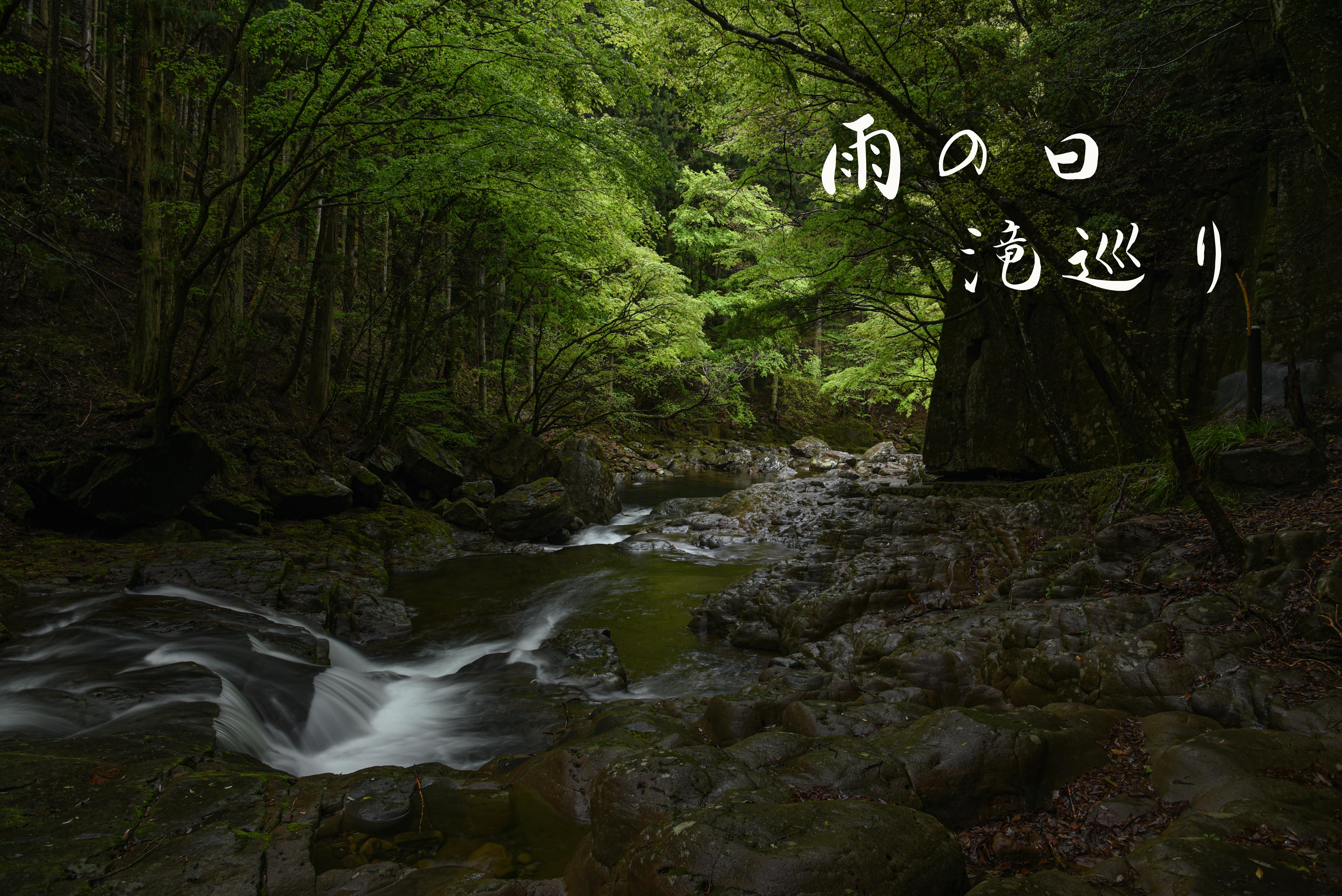 不動七重の滝・赤目四十八滝 ~雨の日は観光瀑歩き~ GW5日目